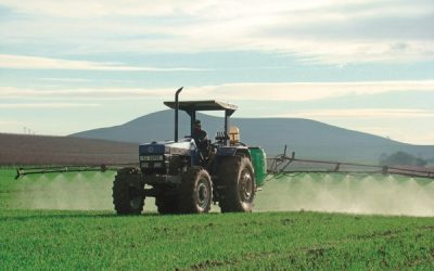 Things You Should Know About Farming And Agriculture